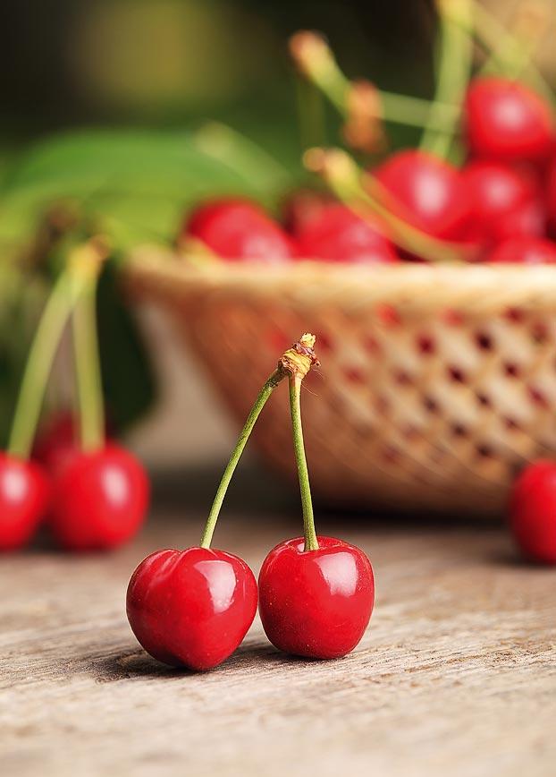 maestri-gelatieri-sorbetto-ciliegia